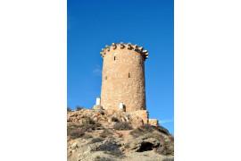 Torre Cárdenas